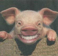 """Så nu ler jag som en """"liten glaèr gris""""."""