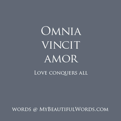 my beautiful words omnia vincit amor. Black Bedroom Furniture Sets. Home Design Ideas