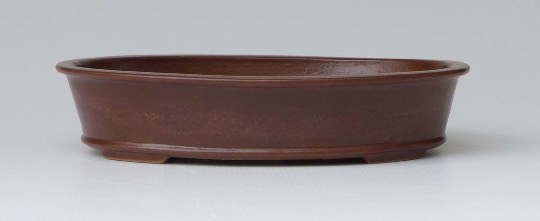 Bonsai Amp Pottery June 2013