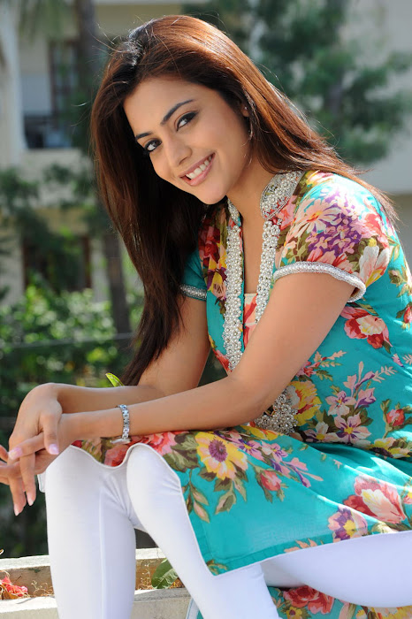 nisha agarwal , nisha agarwal new hot images