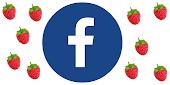 ♥ Follow me on Facebook