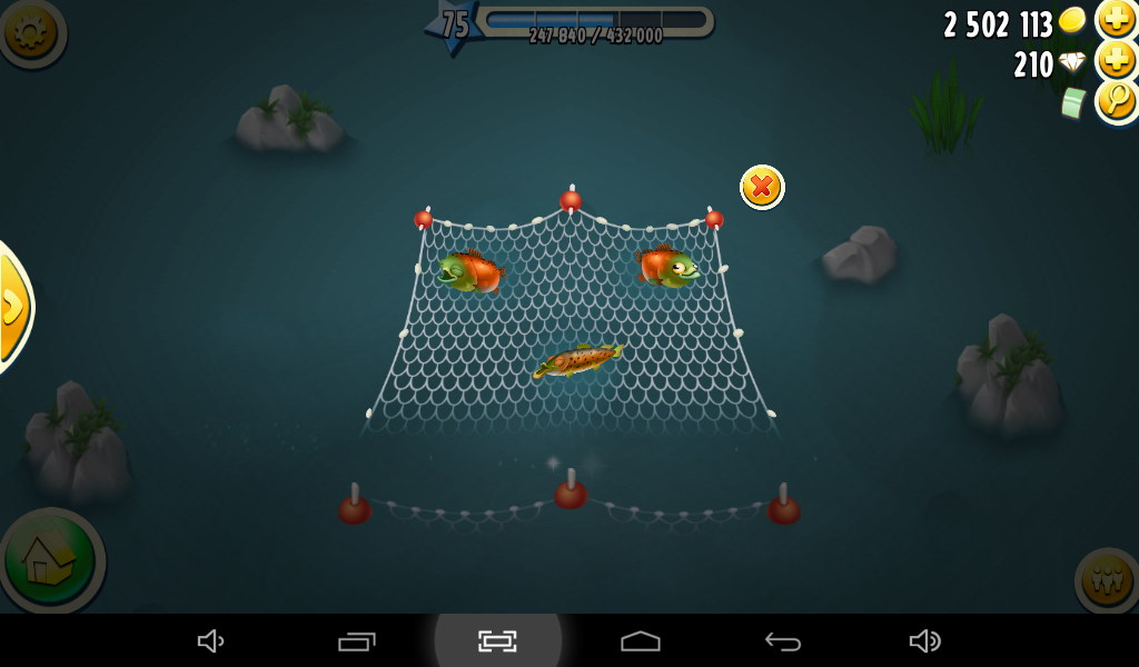 how to catch fish in hayday