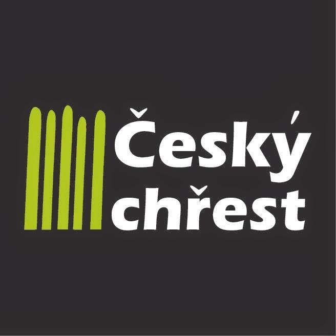Český chřest