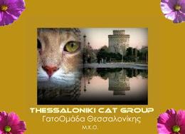 Thessaloniki Catgroup N.G.O