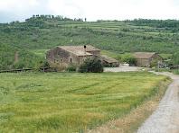Vistes de l'Alzina i al seu darrere, al fons, veiem Cal Canonge i, entre els arbres, l'ermita de Sant Jaume de Riner