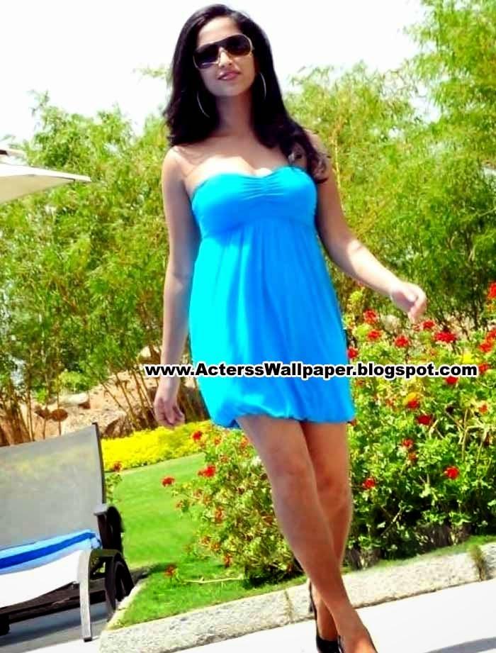 Actress Aasheeka Hot Images 2014 Aasheeka Hot New Images