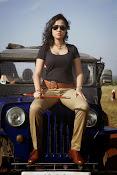 Nisha Kothari latest photos gallery-thumbnail-11