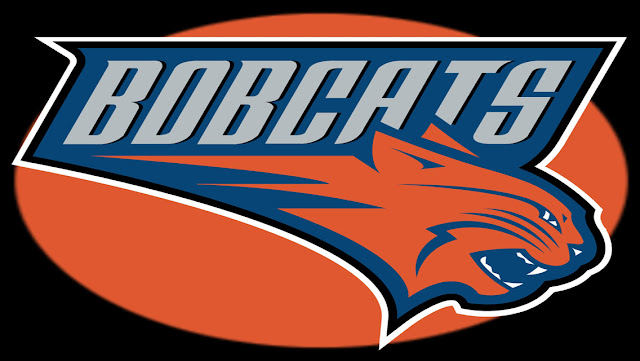 Eastern NBA Team Logo Wallpapers for iPhone 5 - Charlotte Bobcats