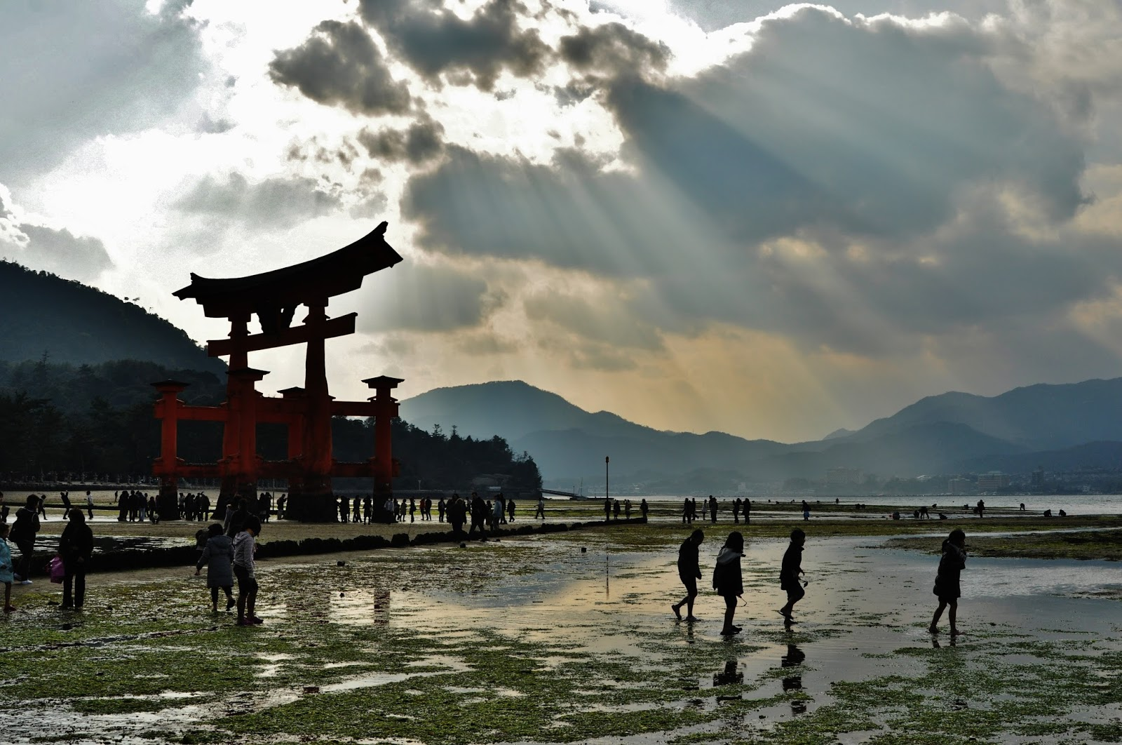 - Nagoya_Low Tide at Miyajima Shrine_Natasha Senn