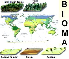 Pengertian Bioma & Macam-Macam Bioma Serta Ciri-Cirinya