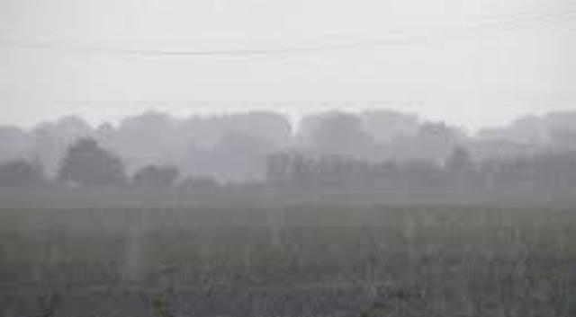 I Z Á.   RAIN RAIN