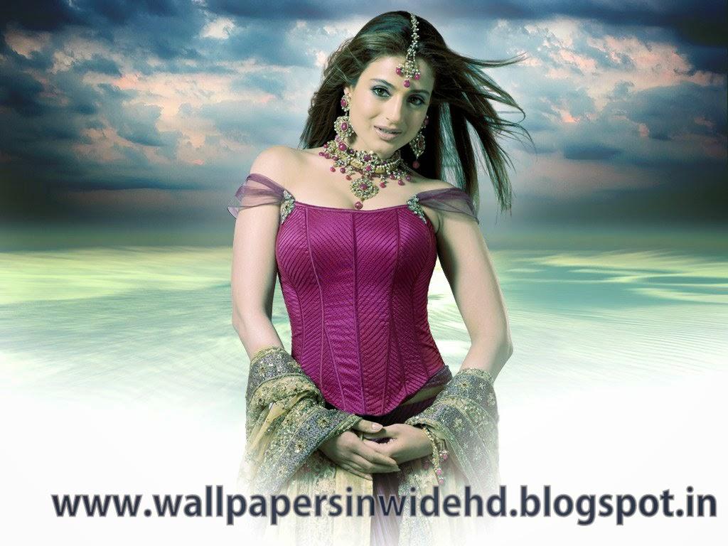100%hdwallpapers: amisha patel hd wallpapers free download
