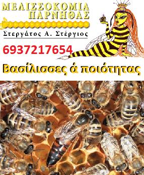 Μελισσοκομία Πάρνηθας