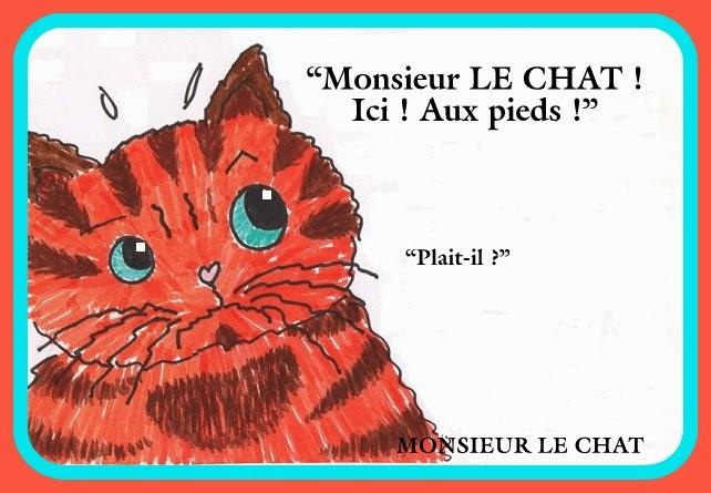 dessin de chat, humour,