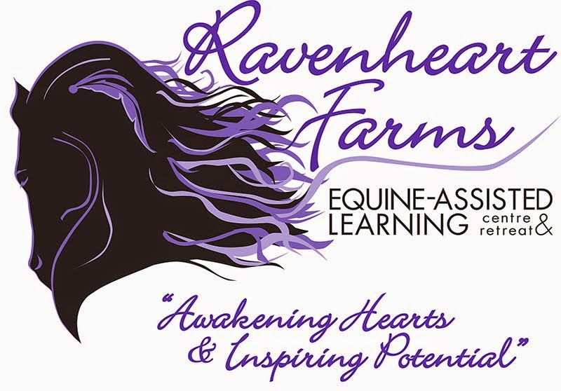 Welcome to the Ravenheart Blog!