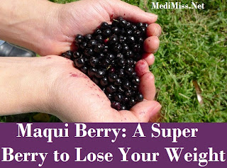 Maqui Berry: A Super Berry to Lose Your Weight