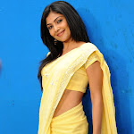Kamalini Mukherjee Hot in Yellow Saree Stills