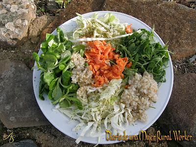 Ensalada con rúcula, canónigos y arroz integral
