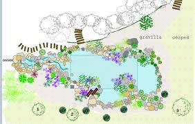 Arte y jardiner a proyecto de un jard n acu tico - Plantas para estanques de jardin ...