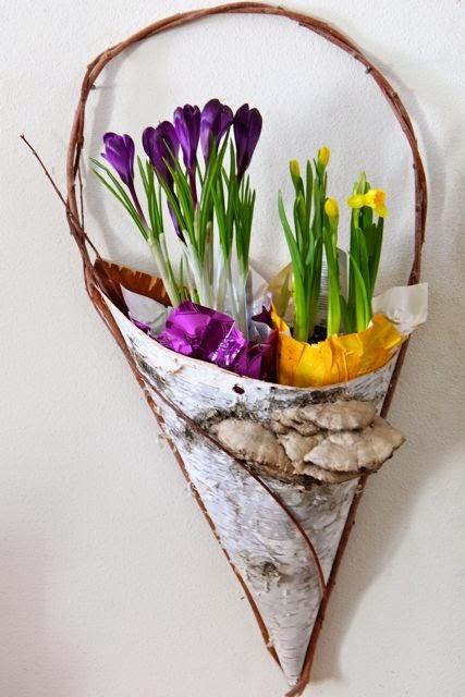 blue crocus, daffodils