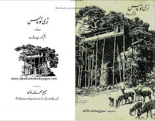 Tree Tops in urdu