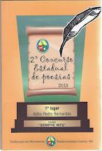 """2013 - Livro do """"II Concurso Estadual de Poesias """"Sempre MTG"""" """""""