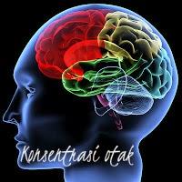 Kecepatan konsentrasi otak