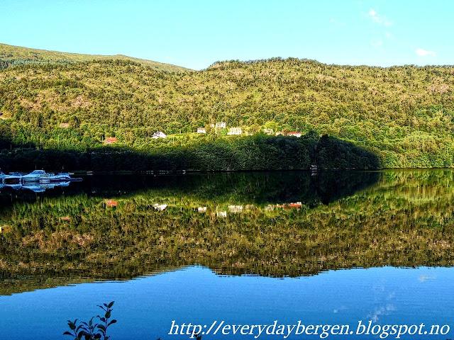 Bergen Arna