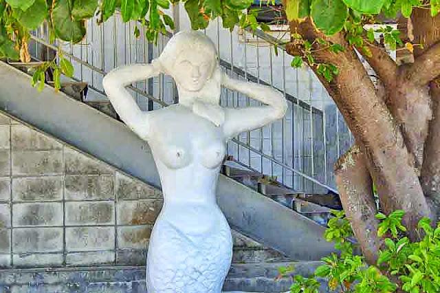 mermaid, image edited