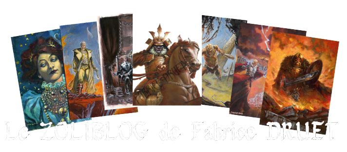 Le Zoliblog de Fabrice Druet