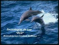 Tecnologías de Luz: Remodelación Cerebral Delfínica