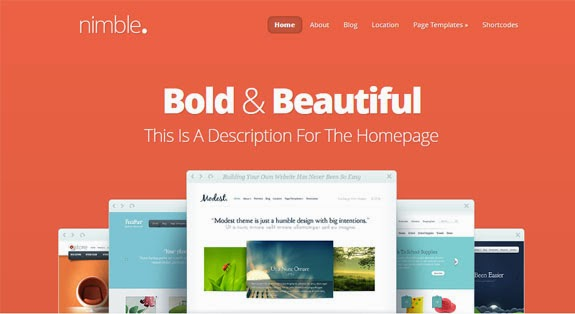 best 6 elegant themes review in 2015