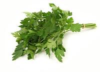 resep obat herbal rematik
