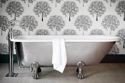 silver clawfoot tub