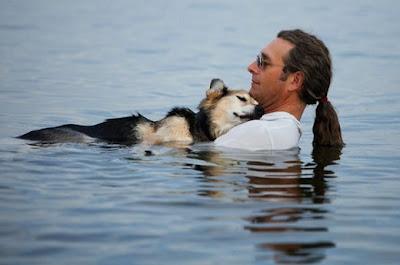 hombre y su perro con artritis en el agua