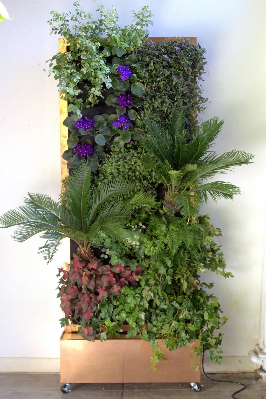 Plants On Walls Vertical Garden Systems October 2011