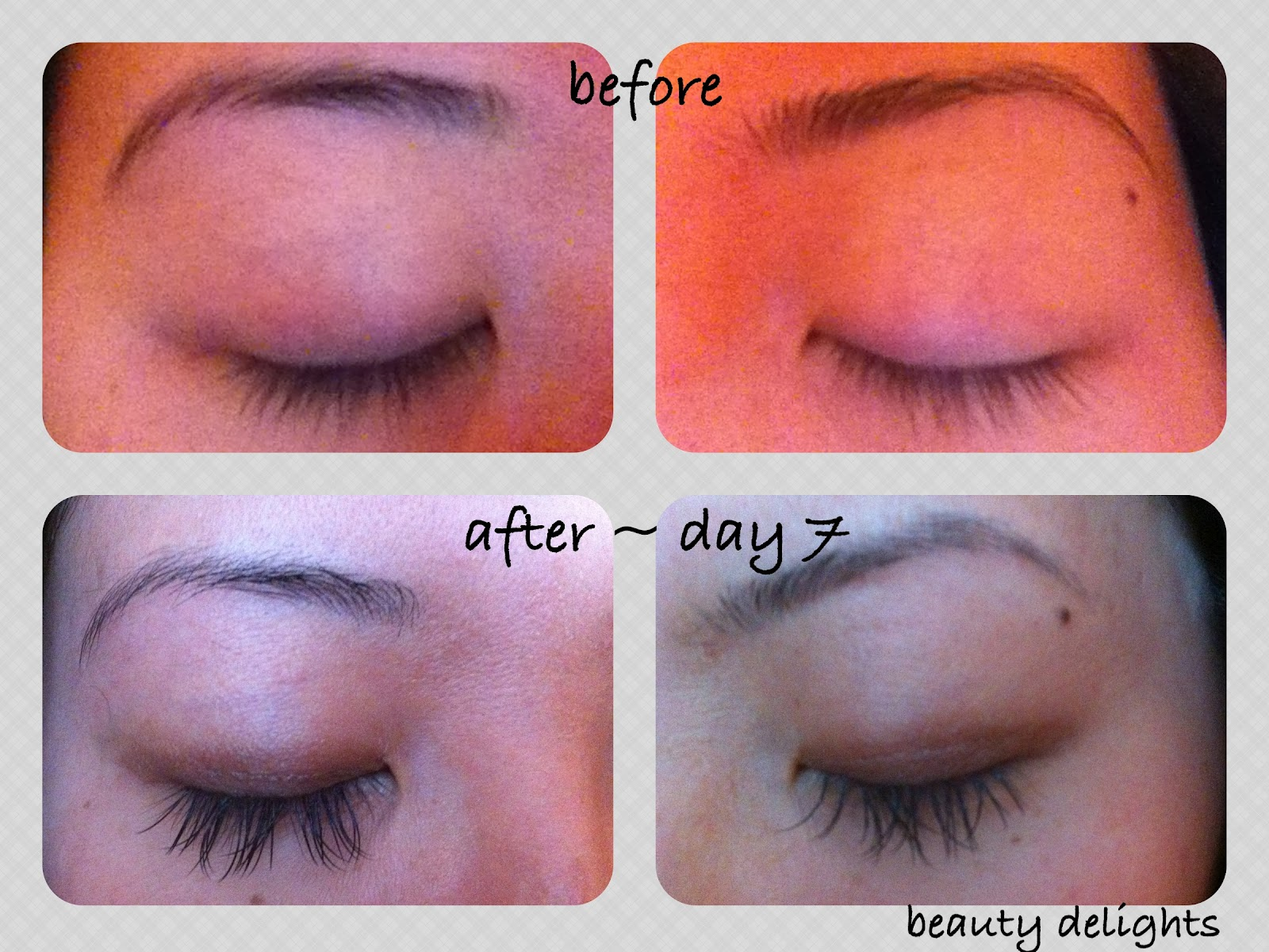 Beauty Delights Review Mink Eyelash Extensions Week 2