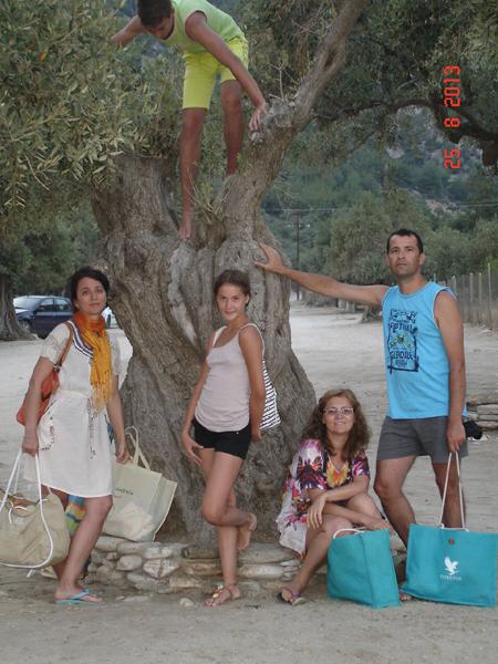 Thassos - Maslini seculari Livadi Beach