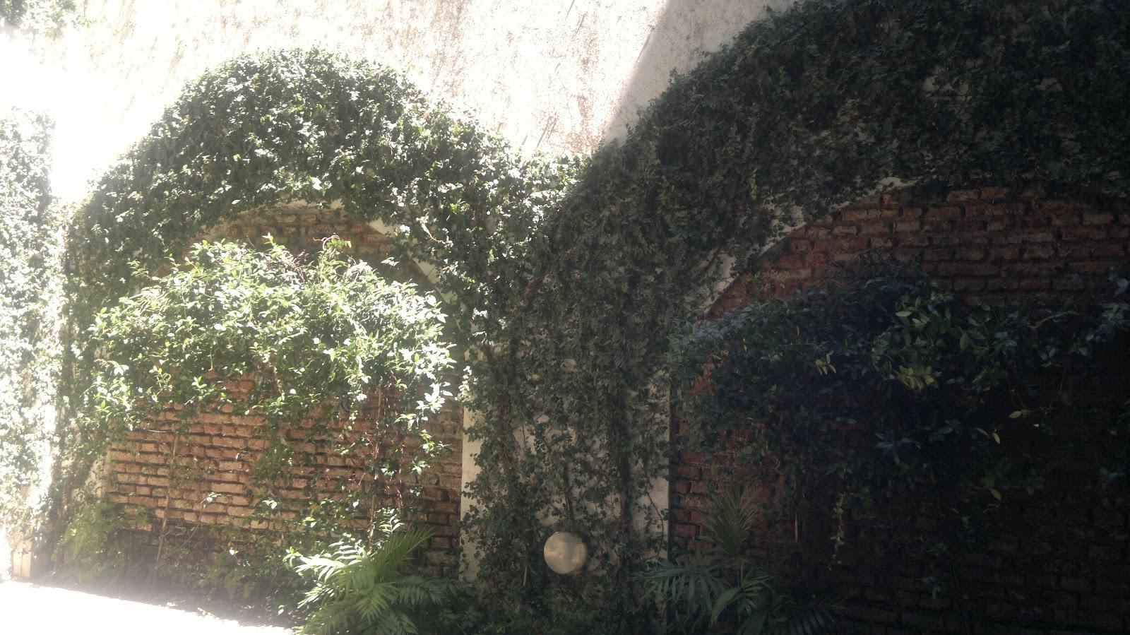 T cnico en jardiner a poda de formaci n y extracci n for Formacion jardineria