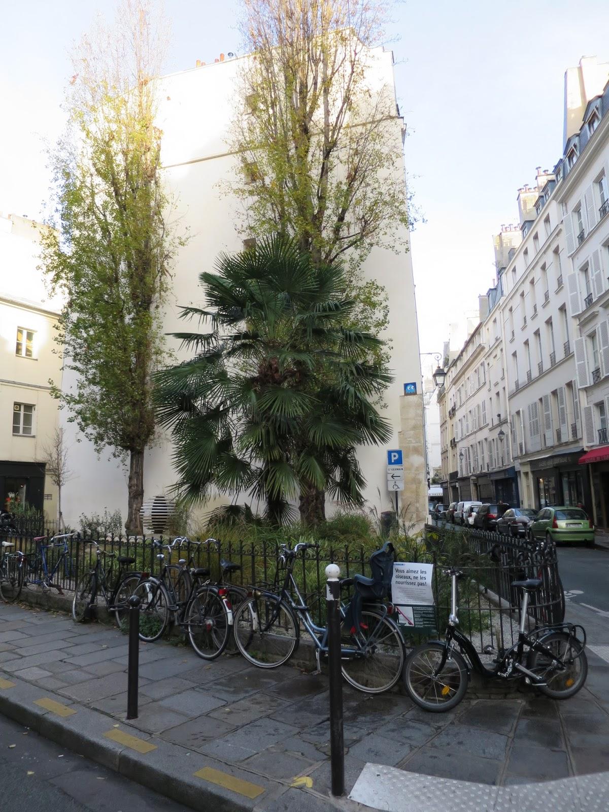 La rte le p re d 39 ulysse 57 rue de seine paris vi me - Jardin d ulysse paris ...