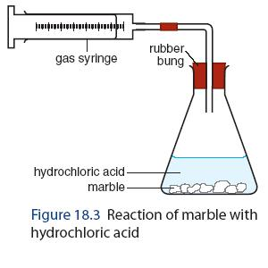 Reactions Rates - Calcium Carbonate and Acid - Activity