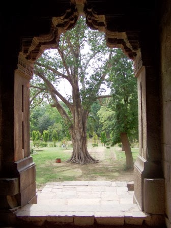 View from inside of a tomb at Lodhi Garden, Delhi