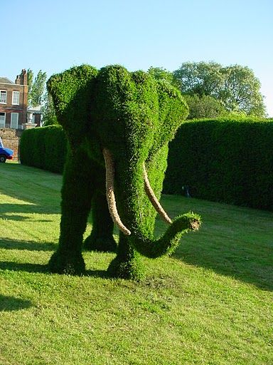 Topiary Art Often Takes The Form Of Geometric Shapes. Straight Lines Are  Not Often Found In Nature, So Square, Rectangular Or Triangular Topiaries  Can Give ...