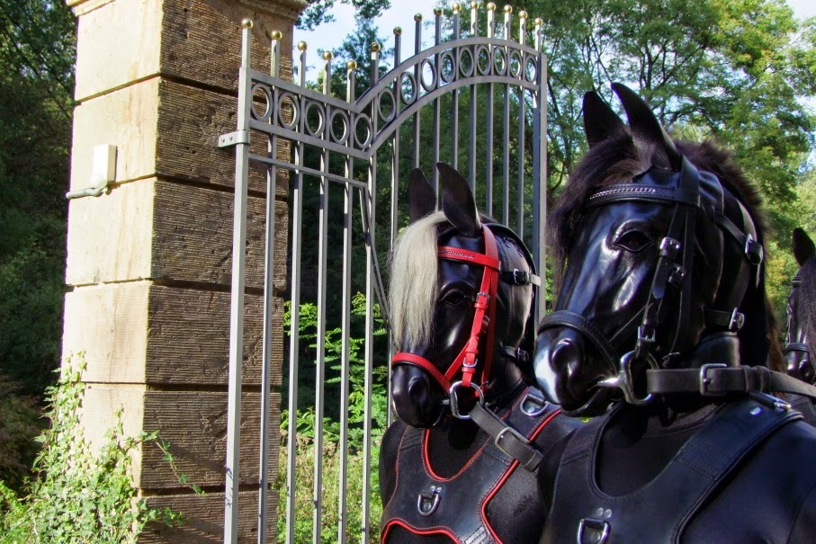 fury fantasy ponyplay mascara mask