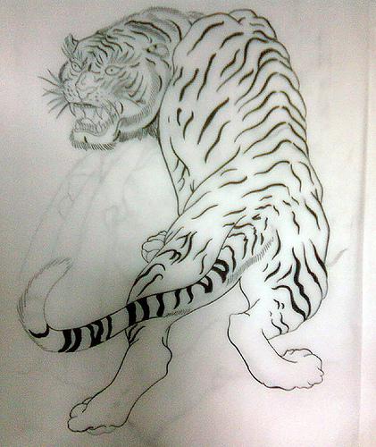 felinos tigres tattoo