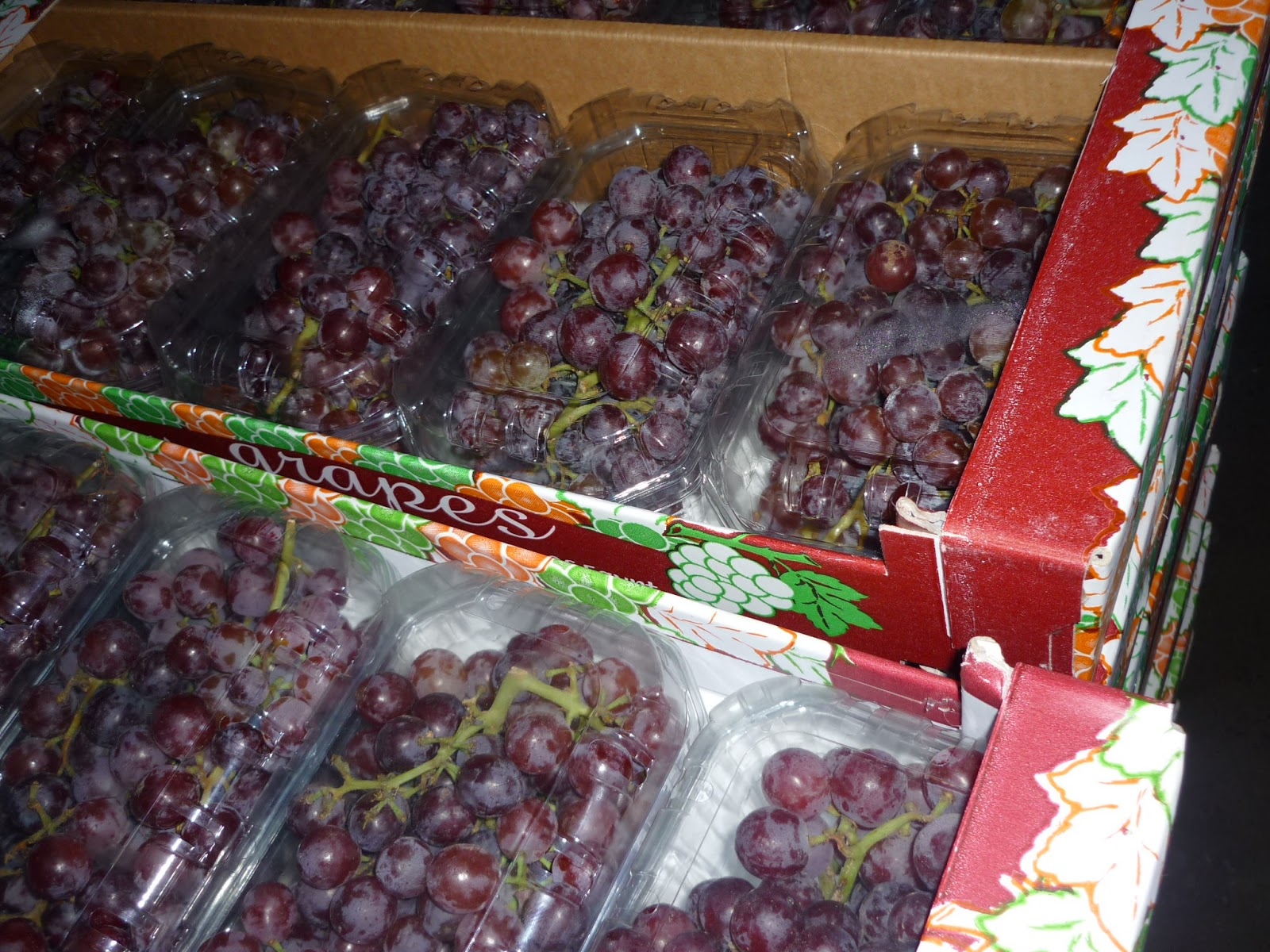 red_grapes_suppliers