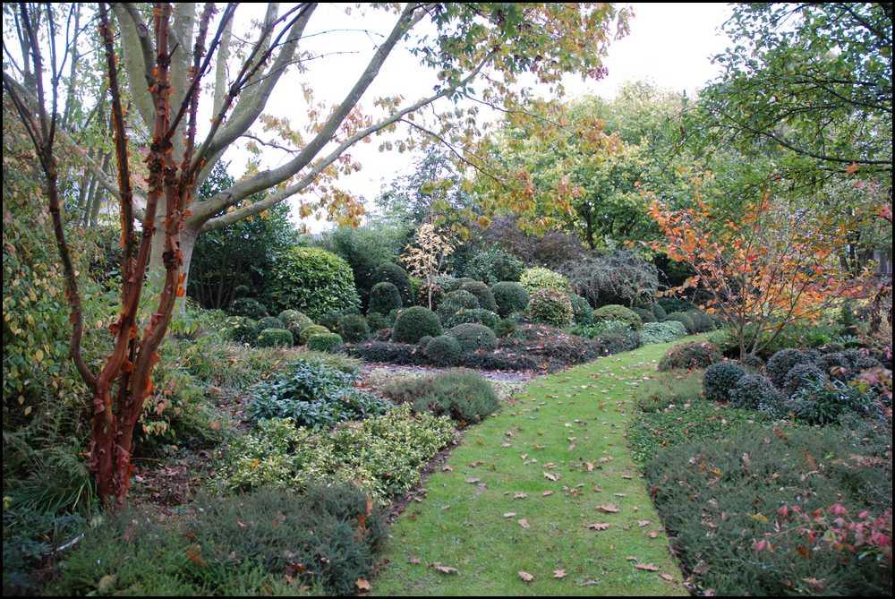 Le jardin du mayet la mare aux trembles for Le jardin aux epilobes