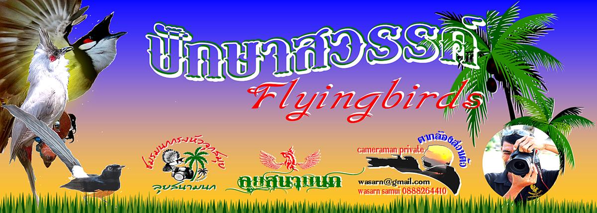 ปักษาสวรรค์ flyingbirds