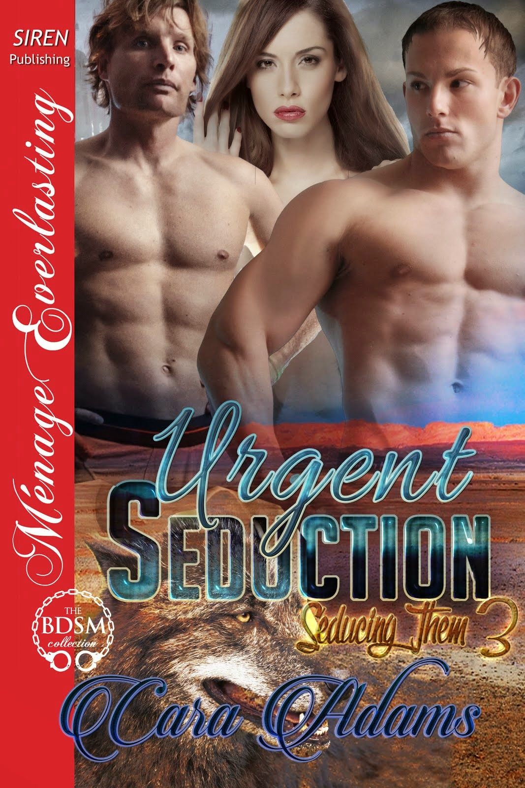 Urgent Seduction