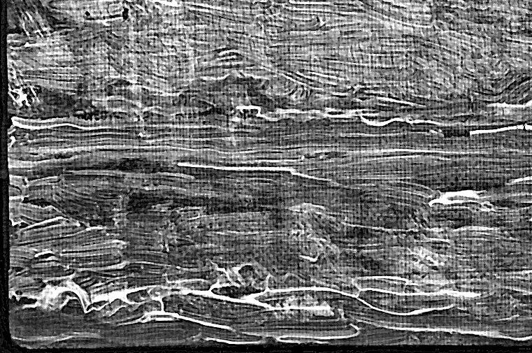 Vincent van Gogh Landschaft mit pflügendem Bauer digitales Röntgenbild Detail